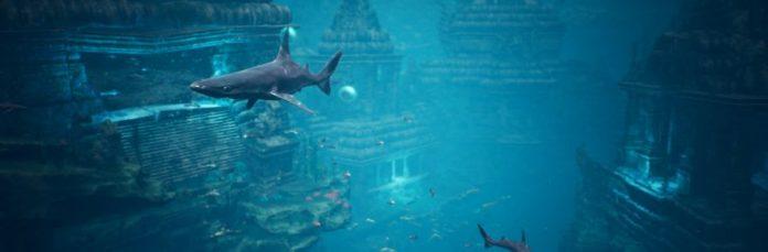 baaaaaby shark